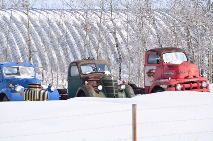 Cool Old Trucks in the Snow