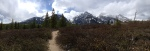 Trail panoramic (IPhone photo)