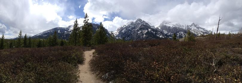 Trail panoramic (IPhone photo)