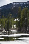 Yellowstone May 2014 1034