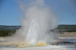 Yellowstone May 2014 1555