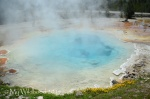Yellowstone May 2014 1595