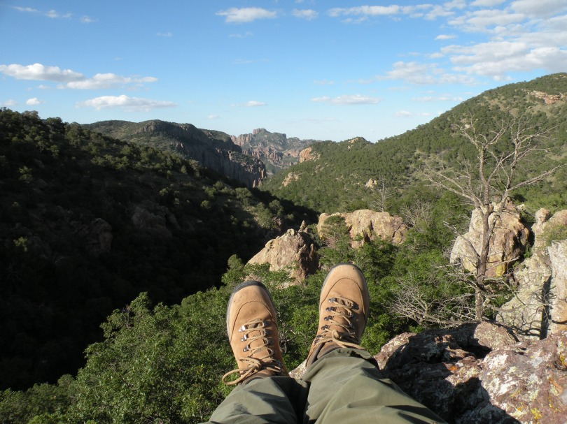 Here I am, overlooking the canyon. This was my view a lot during my research, because the bears were often found in the higher elevations. Wherever the bears were reported, that's where I went.