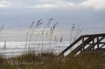 Dune Walkway