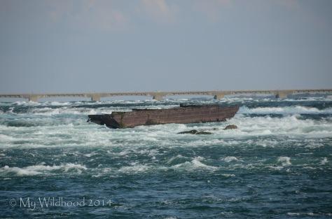 Shipwreck on the Niagara River