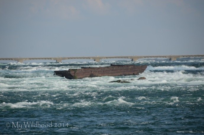 Shipwreck on the Niagara River