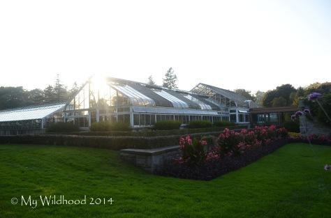 A greenhouse I was definitely jealous of!