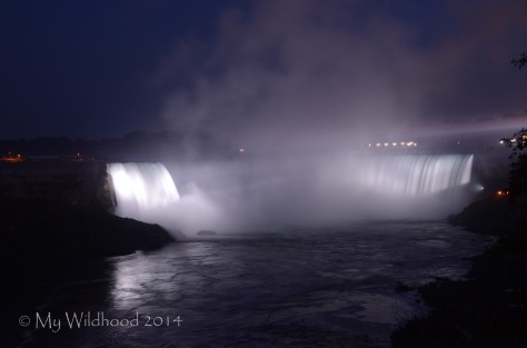 Horseshoe Falls, the falls that separate the US from Canada