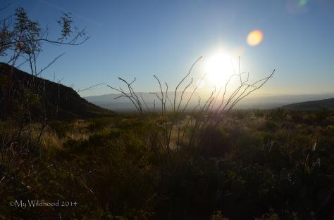 Early morning sunrise over the Carmens