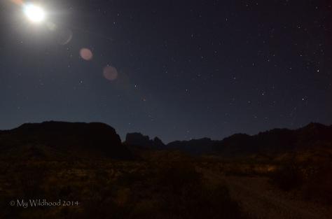 Moon and stars over the desert