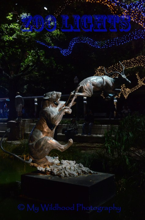 My favorite statue in the zoo - a lioness taking down a gazel